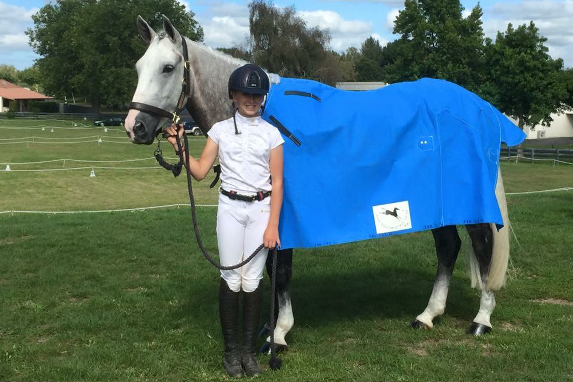 Nz Canvas Horse Covers